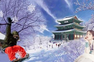 HÀN QUỐC - MÙA ĐÔNG 2018 (SEOUL - ĐẢO NAMI - EVERLAND)