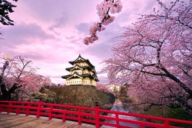 NHẬT BẢN:  TOKYO - NARITA - FUJI - DISNEYLAND