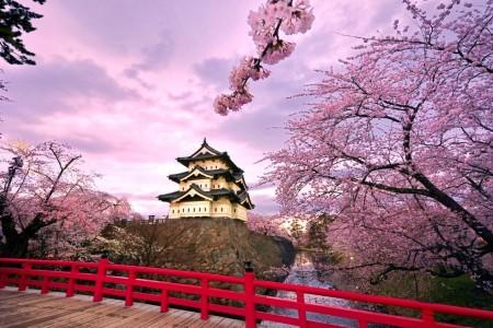 NHẬT BẢN (OSAKA - KYOTO - KOBE - NAGOYA - HAKONE - NÚI PHÚ SỸ - TOKYO)