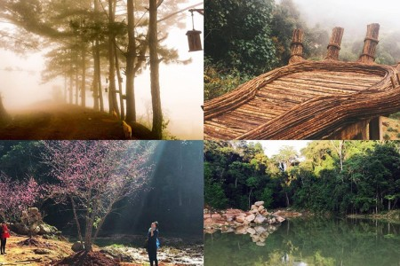 Đà Lạt - Cổng Trời - Hoa Sơn Điền Trang - Bàn Tay Phật