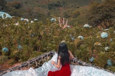 Đà Lạt: KDL DaLaLand - Hiệp Khách Lầu - Hồ Vô Cực - Thung Lũng Đèn - Que Garden - Linh Ẩn Tự - Thác Voi